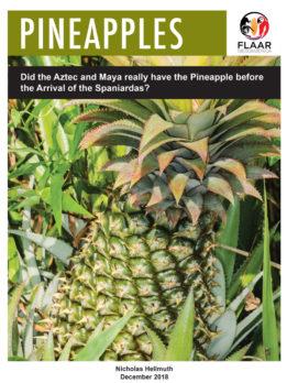 was-pineapple-prehispanic-Maya-Aztec-foods-Hellmuth-FLAAR-Dec-2018-SM-preview3