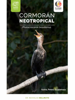 Cormoran-vol1-Birds-Yaxha-FLAAR-Mesoamerica-Nov-2018