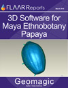 3D Software for Maya Ethnobotany Papaya