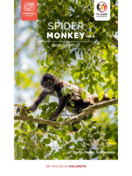 Spider-monkey-vol1-mammals-Yaxha-FLAAR-Mesoamerica-Jan-2019-ASD-eng-preview3