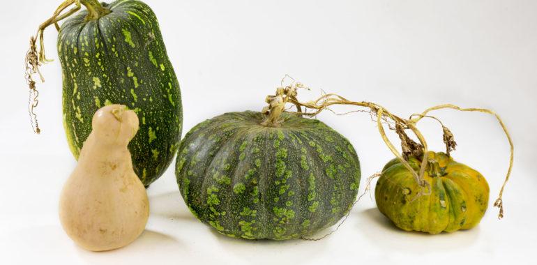 Guatemalan pumpkins