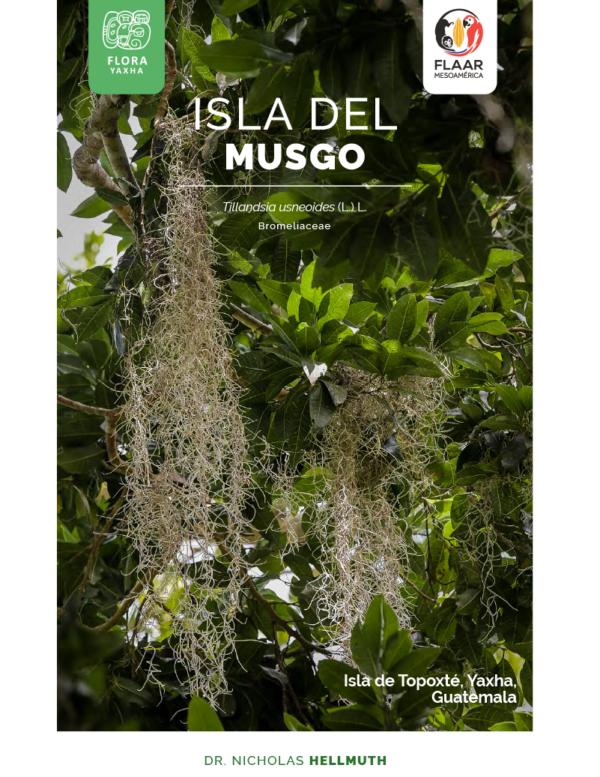 Musgo-Topoxte-vol1-Flora-Yaxha-FLAAR-Mesoamerica-Jan-2019-ES-cover