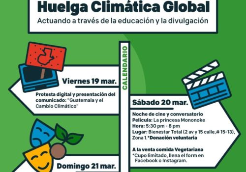 huelga-climatica-flaar-mesoamerica-2021