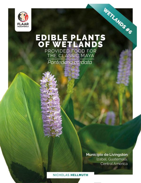 Pontederia cordata-edible-wetlands-plants-livingston-Nicholas-Hellmuth-FLAAR-2021-AG-cover